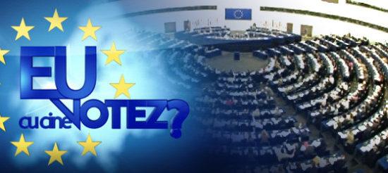 Dispozitie stabilire locuri de afisaj electoral alegeri europarlamentare